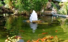 Як вибрати насос для фонтану